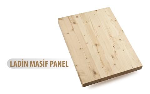 ladin-masif-panel