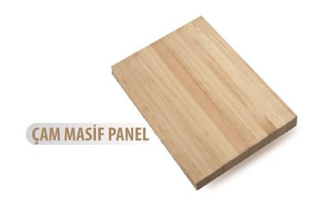 cam-masif-panel